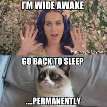 Katy-Perry-Memes3