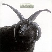 220px-The_Cult_(Black_Sheep)_cover