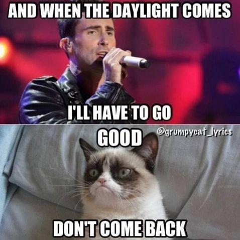 af09436f073c798ad03743f06f734a84--funny-grumpy-cat-memes-grumpy-cat-quotes