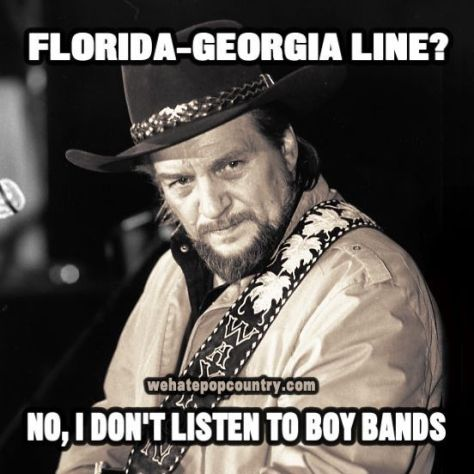 dd9ee5f67b420712720f3abd89afea0d--outlaw-country-music-memes
