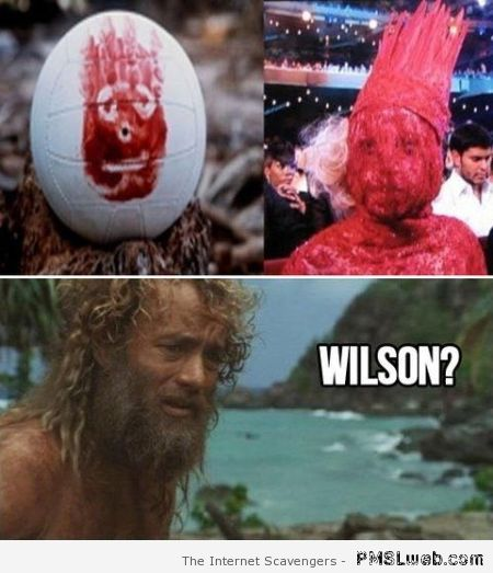 6-lady-gaga-is-wilson-meme