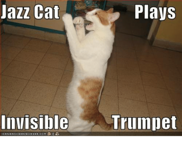 azz-cat-plays-invisible-ican-ha-sch-e-e-ze-26233218