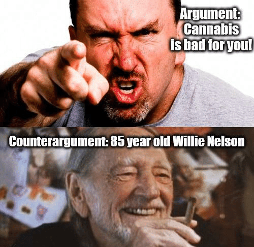 argument-cannabis-is-bad-foryou-counterargument-85-year-old-willie-38818525.png