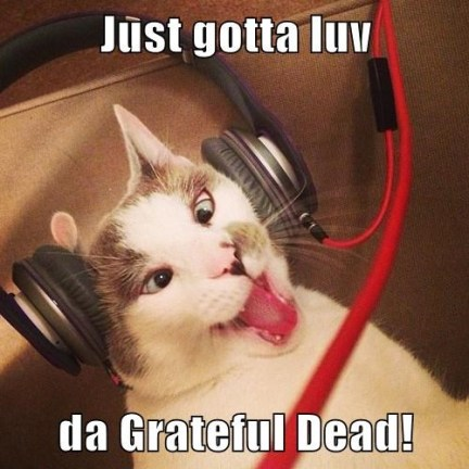 just-gotta-luv-da-grateful-dead