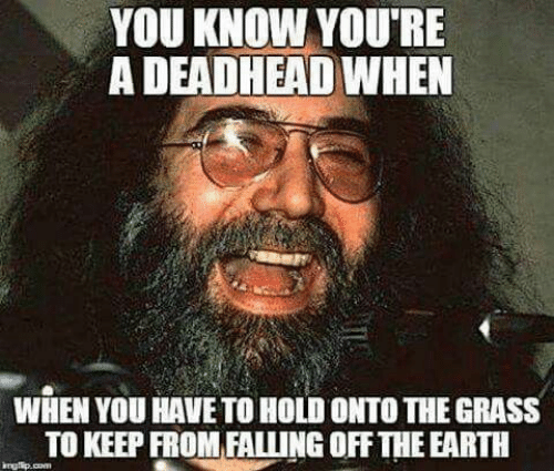 you-know-youre-a-deadhead-when-when-you-have-to-53081630